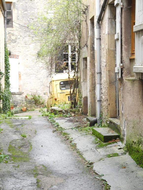 DSCN4550